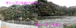 居酒屋『川』11.11 閉店\(_ _*)m(_ _)m(*_ _)/ 2日目 元に戻りつつある川